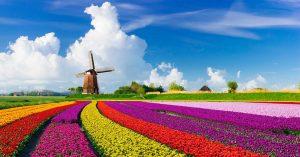 dfvdfgvpvtjjcf4it4ut4482xirtr239rx3k 300x157 کشور هلند را بیشتر بشناسیم